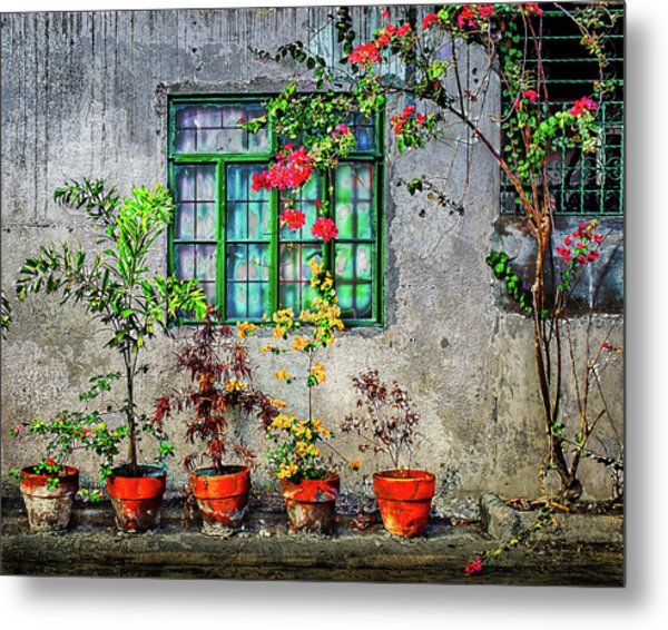 Metal Print featuring the photograph Tropical Wall by Michael Arend