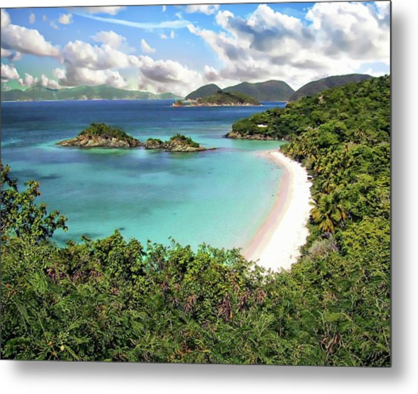 Trunk Bay Metal Print