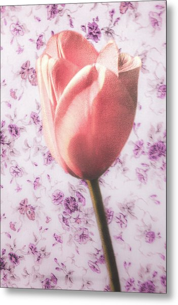 Metal Print featuring the photograph Tulip Contrasted by Michael Arend