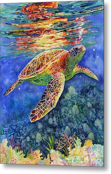 Turtle Reflections Metal Print