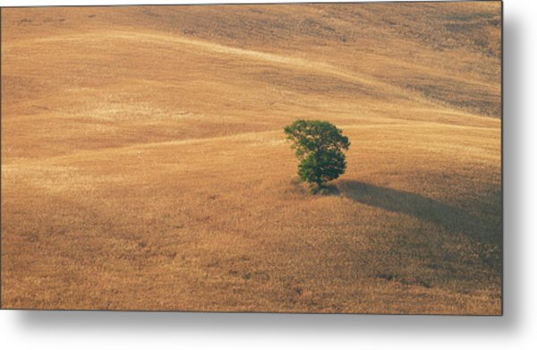 Metal Print featuring the photograph Tuscany by Mirko Chessari