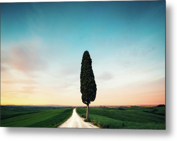 Tuscany Road Metal Print by Borchee