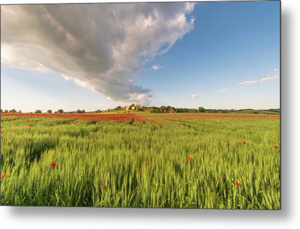 Metal Print featuring the photograph Tuscany Wheat Field Dotted With Red Poppies by Mirko Chessari