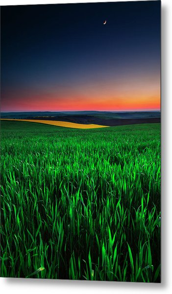 Twilight Fields Metal Print