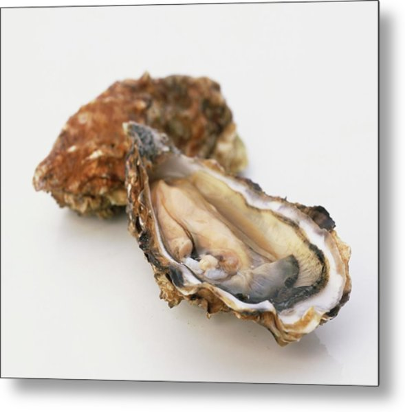 Two Oysters, One Of Them Open, Close Up Metal Print