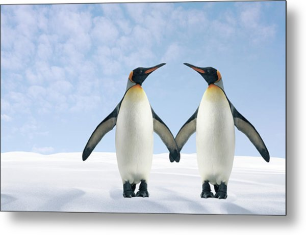 Two Penguins Holding Hands Metal Print by Fuse