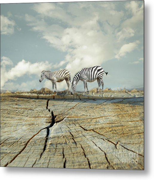 Two Zebras In A Surreal Landscape Metal Print
