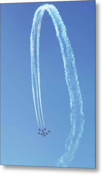 Vertical Snowbird Loop Metal Print