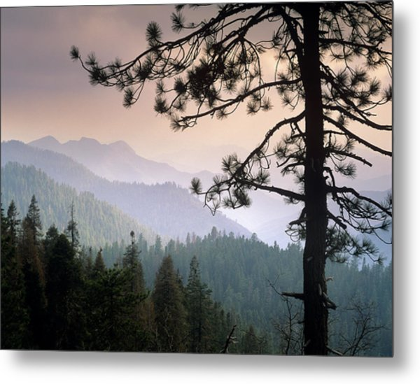 View Over Foothills To The West From Metal Print by Tim Fitzharris/ Minden Pictures