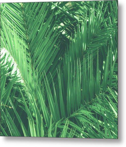 Vintage Palms I Metal Print