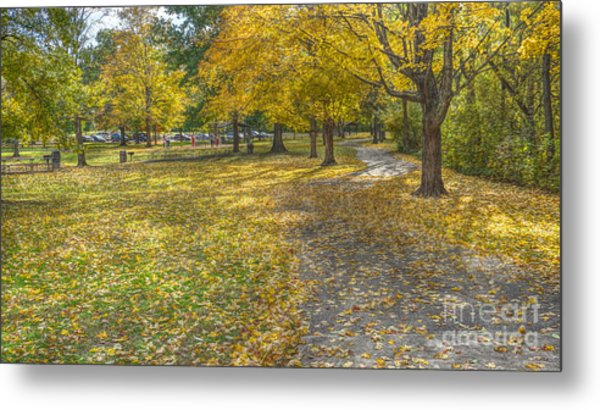Walk In The Park @ Sharon Woods Metal Print