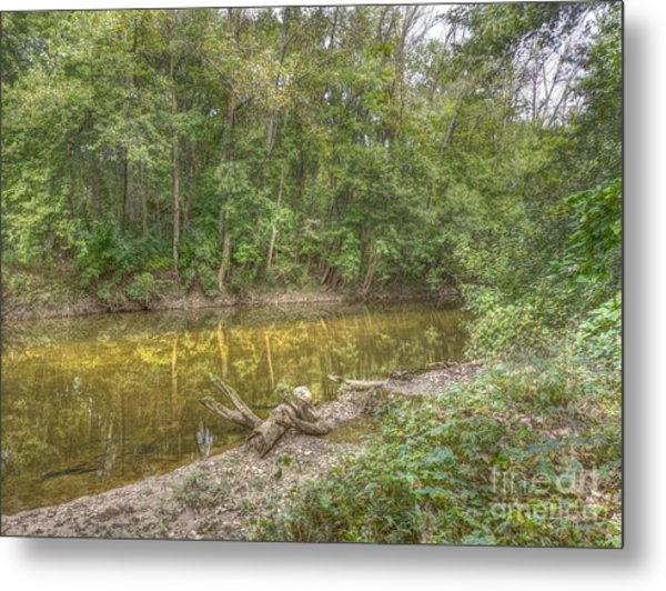 Walnut Creek Metal Print