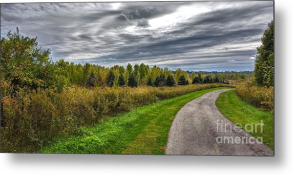 Walnut Woods Pathway - 2 Metal Print