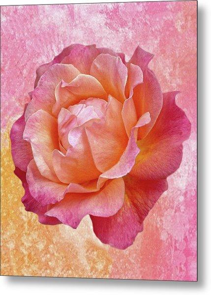 Warm And Crunchy Rose Metal Print