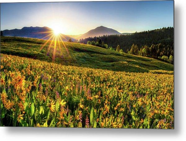 Warm Spring Sunrise 2 Metal Print by Leland D Howard