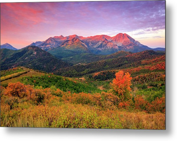 Wasatch Back Autumn Morning Metal Print
