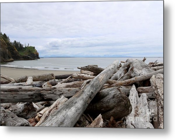 Washington Coastline With Driftwood Metal Print