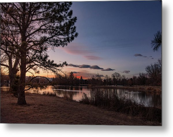 Metal Print featuring the photograph Washington Park by Philip Rodgers