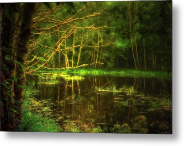 Water Nymph Habitat Metal Print