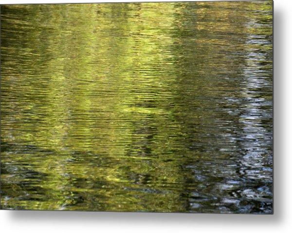 Water Reflection_521_17 Metal Print