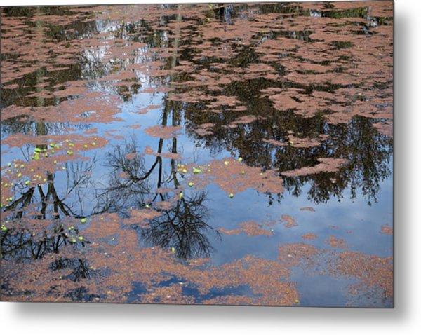 Water Reflection_svrp_1056_18 Metal Print