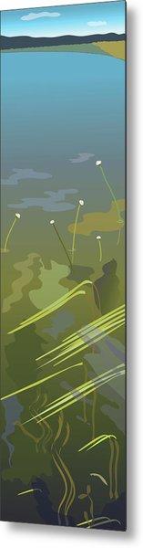 Water Weeds Metal Print by Marian Federspiel