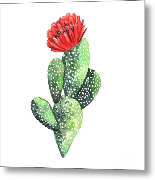 Watercolor Cactus. Original Watercolor Metal Print