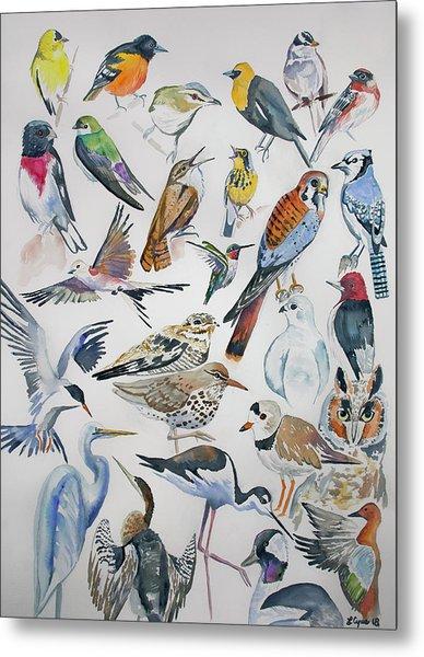 Watercolor - North American Birds Metal Print