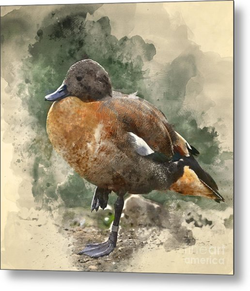 Watercolour Painting Image Of Beautiful Metal Print
