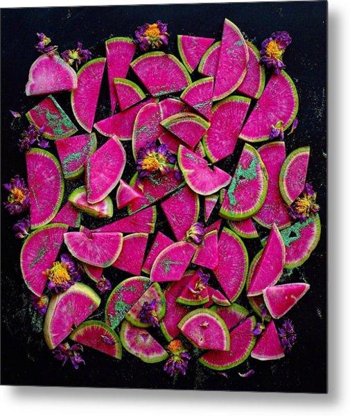 Watermelon Radish Edges Metal Print