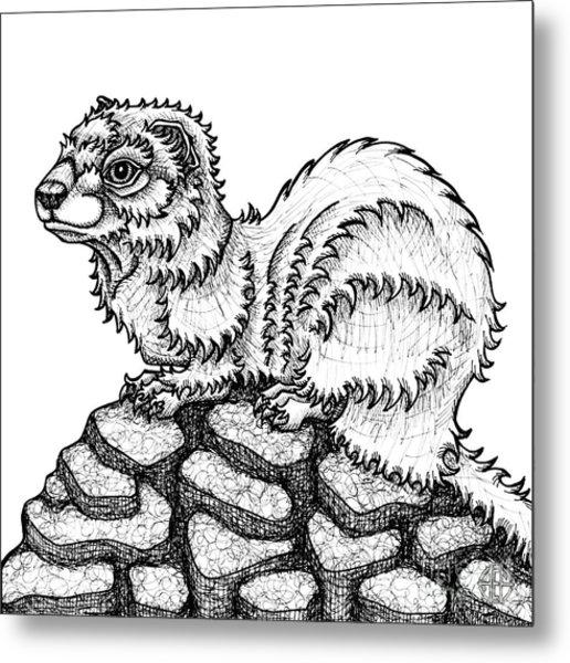 Weasel Metal Print