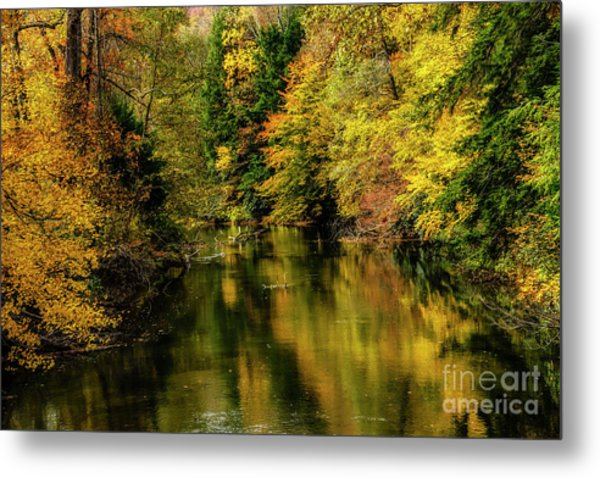 Wet Autumn Day Gauley River Metal Print