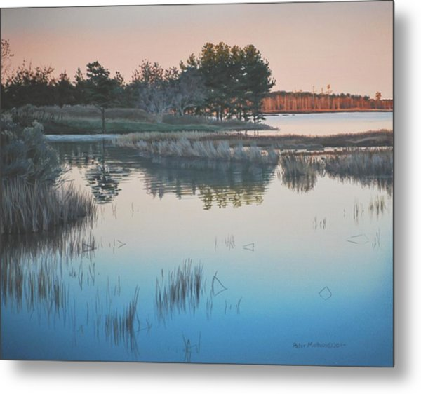 Wetland Reverie Metal Print