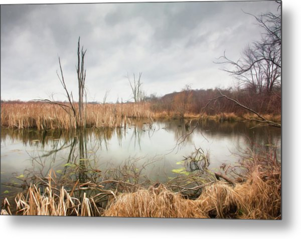 Wetlands On A Dreary Day Metal Print