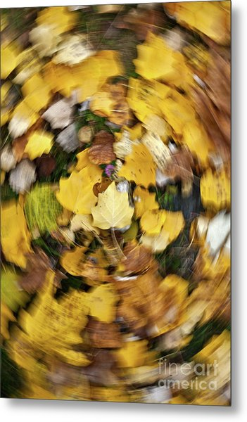 Whirlpool Of Autumn Metal Print