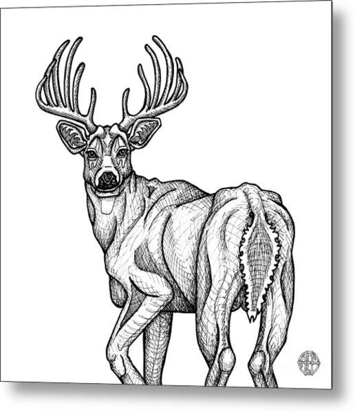 White Tailed Buck Metal Print