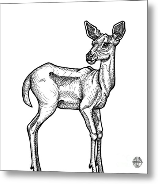 White Tailed Doe Metal Print