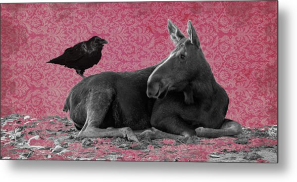 Why Are You Here? Metal Print