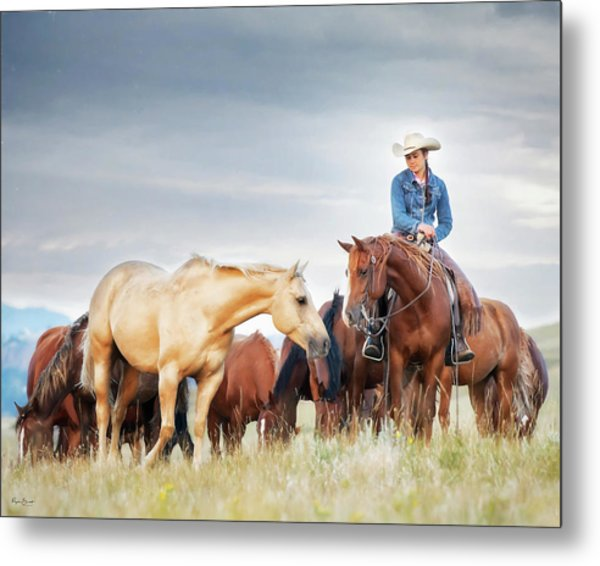 Why Not Make New Friends Metal Print