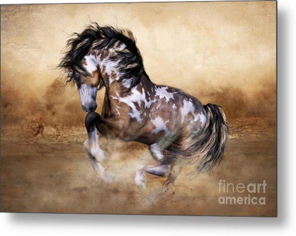 Wild And Free Horse Art Metal Print