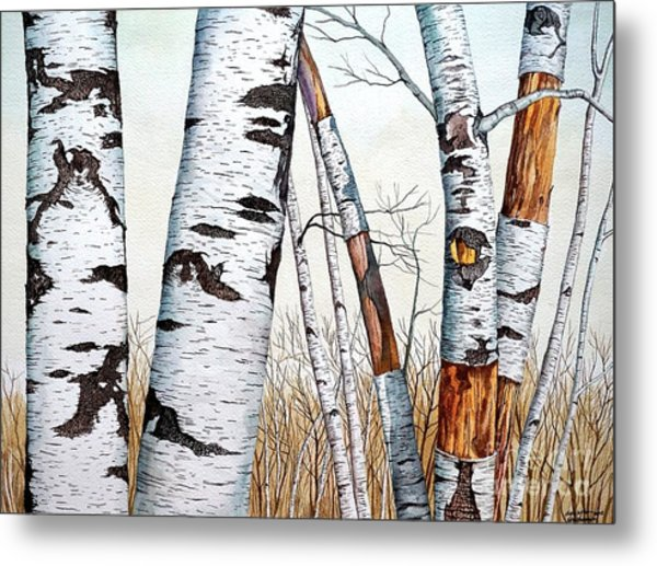 Wild Birch Trees In The Forest In Watercolor Metal Print
