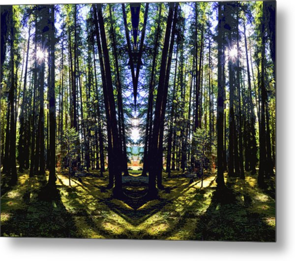 Wild Forest #1 Metal Print