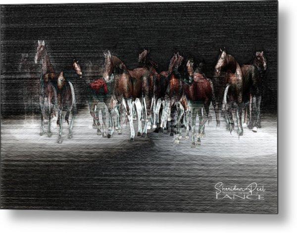 Wild Horses Under Spotlight Metal Print