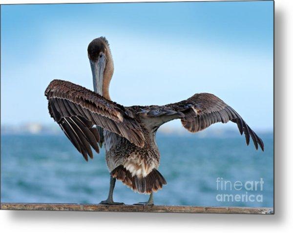 Wildlife Scene From Ocean. Brown Metal Print
