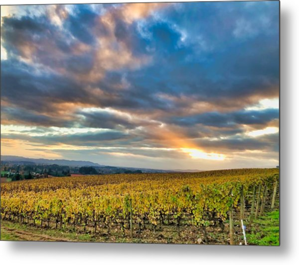 Willamette Valley In Fall Metal Print