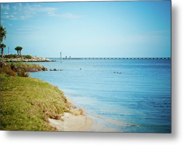 William Bantram Park Metal Print by Sharondipity Photography