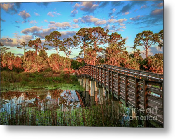 Metal Print featuring the photograph Winding Waters Boardwalk by Tom Claud