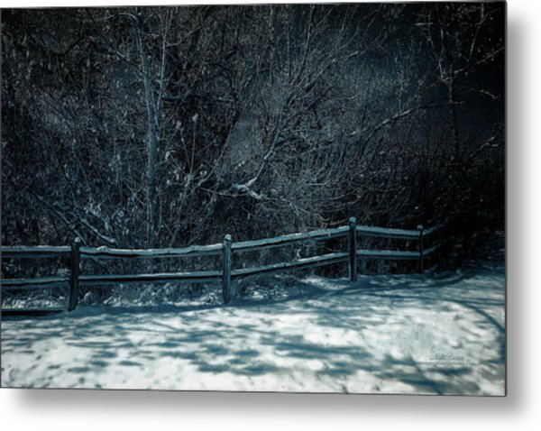 Winter Arrived Metal Print