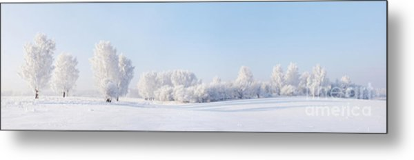 Winter Beautiful Landscape With Trees Metal Print by Alex po