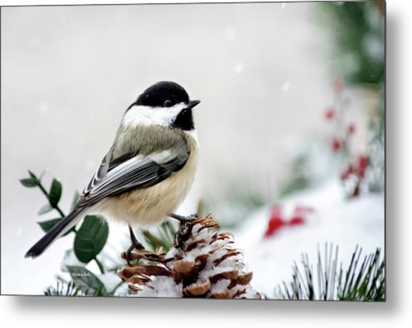 Winter Chickadee Metal Print